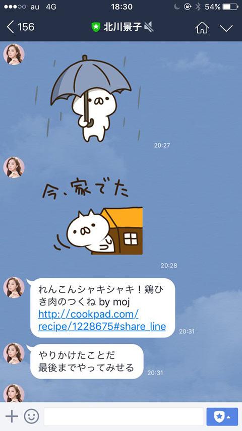 食べ方は汚い?けど料理上手な北川景子の可愛いLINEのトーク画像02